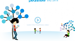 Pearltree, a new platform for exhibits?