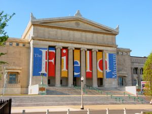 "CHICAGO - JUNE 07: The Field Museum of Natural History on June 07, 2005 in Chicago, Illinois. The Field Museum has been at the building shown here since 1921. - Jason Patrick Ross / <a href=""https://www.shutterstock.com/fr/image-photo/chicago-june-07-field-museum-natural-246331342?src=Iat4XiCEClGGwKGncq9BqA-1-7"">Shutterstock</a>"